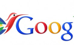 2014 Google SEO Ranking Factors after updating Humming Bird. (Google Hummingbird)