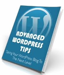 Top 12 Quick Tips to start your WordPress Blog
