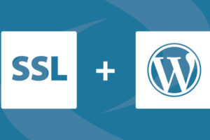 How to Add SSL and HTTPS in WordPress?